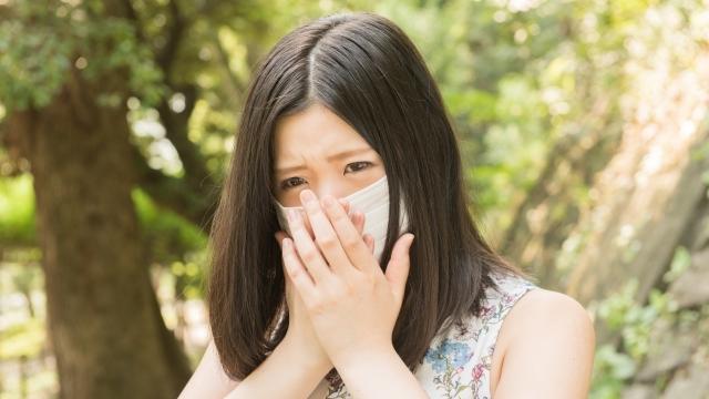 花粉症対策食べ物飲み物