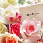 薔薇(バラ)の色別・本数の違いによる花言葉は?12本・40本でプロポーズ