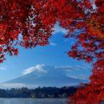 東海の紅葉狩りの見頃と穴場スポット7選のご紹介!+香り狩りも楽しむとは?